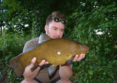 A Good Cobbetts Tench