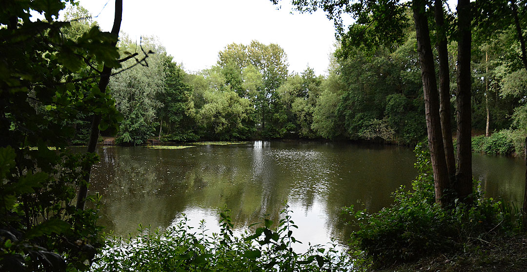 Woking & District Angling - Powells Pool