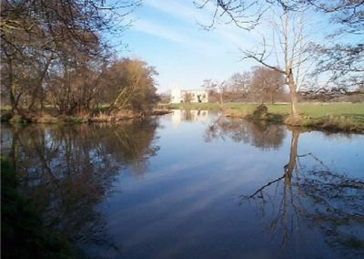 River Wey - Deep and slow