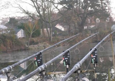 Rods in the frost
