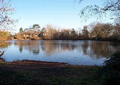 Sandersons Lake View