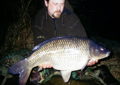 Stunning Common Carp