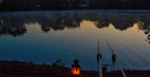 Night fishing tickets at Woking & District Angling